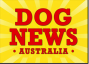 DogNews